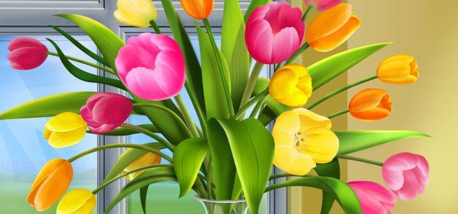 8 Марта — Женский День и почему принято дарить тюльпаны?